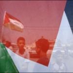 palestinereportage16